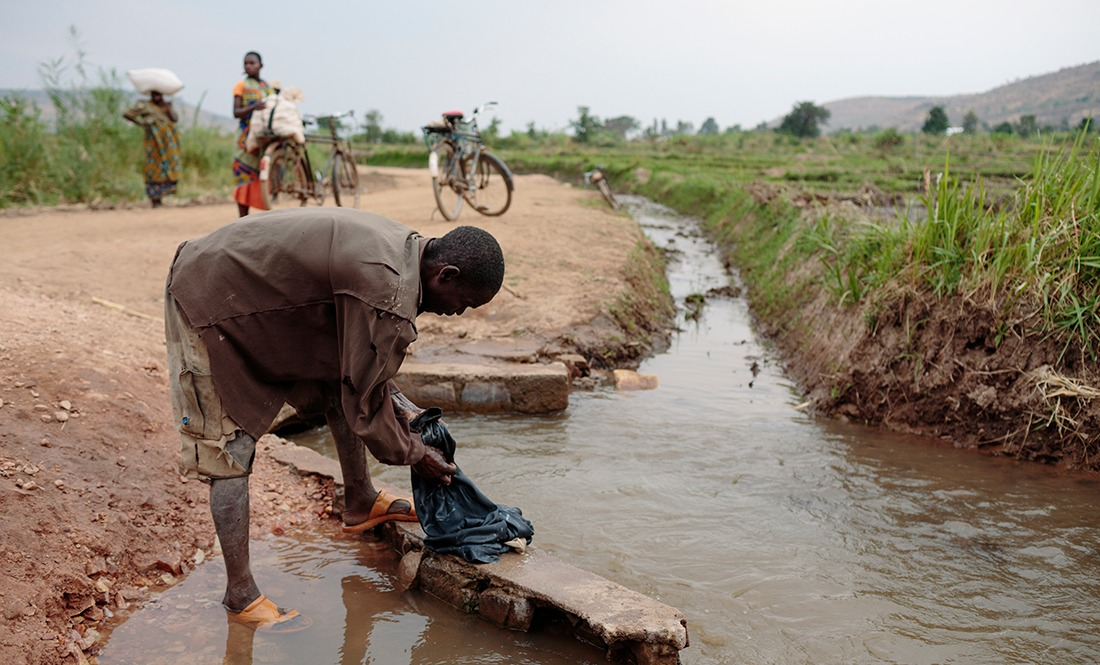 Schistosomiasis Full Width picture 2