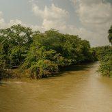 Scenic shot of river in Nigeria.