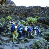 Hikers climbing up Mt. Kilimanjaro